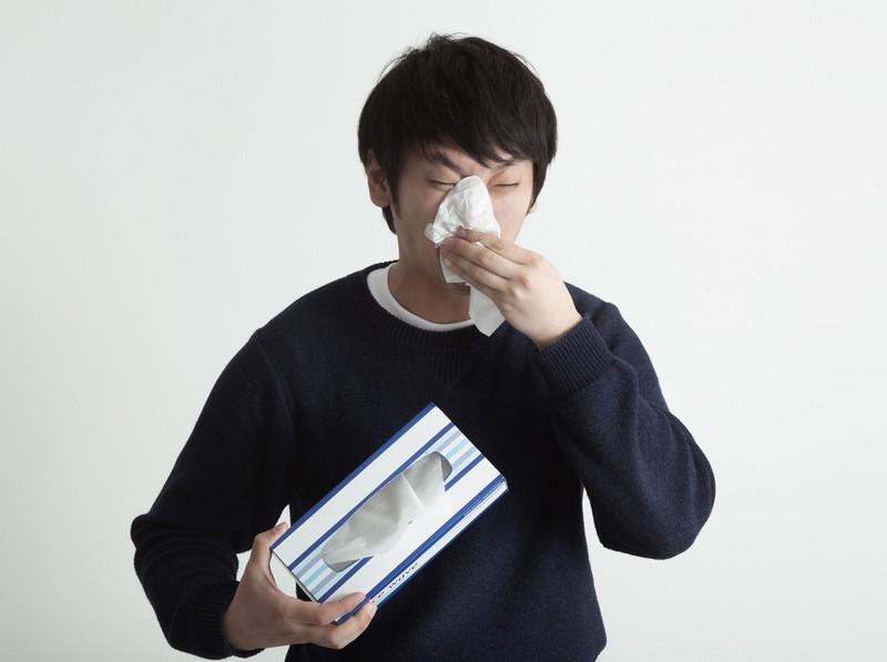 今日の英語:花粉症