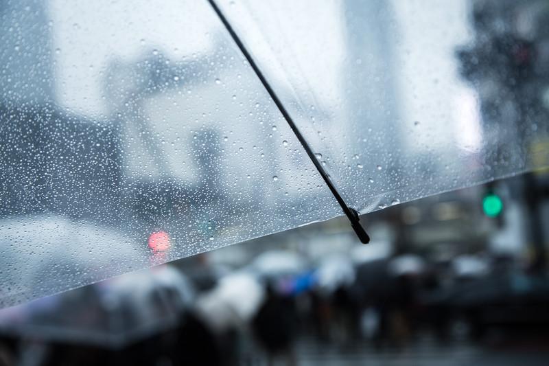 今日の英語:梅雨